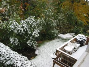 Click to enlarge: Snow-frosted neighbor's lawn and deck